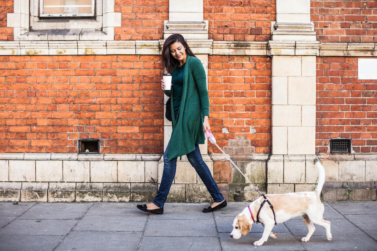 Å ta med hund fra utlandet